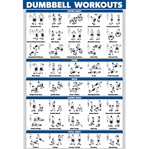 palace learning dumbbell workout exercise poster