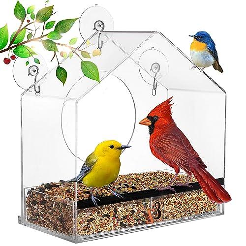 the birdfeeder