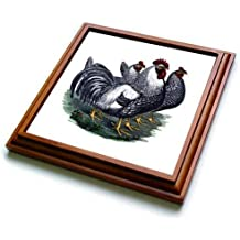 3dRose trv/_4625/_1 Bichon Frise Trivet With Tile 8 by 8