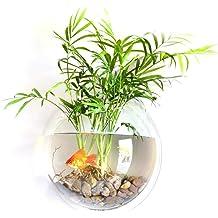 Lovhop Shrimp Fish Tank Feede Aquariumr Pinhole Glass Pot Plant Cup Holder Aquatic 1PC