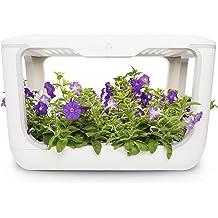 Ubuy India Online Shopping For Indoor Gardening ...